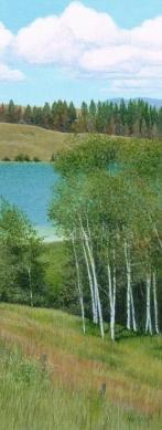 birch-grove-4-x-1-5-inches