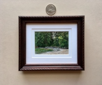 Miniature painting framed