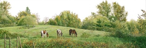 Horses in the Field (1.75 x 5.25 inches)