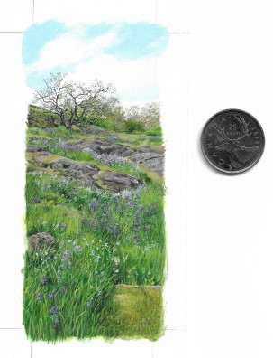 """Spring Meadow"" (1.75 x 4.25 inches), acrylic on art board, with coin for scale."